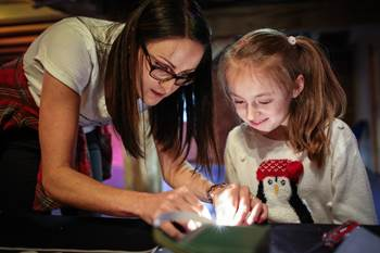Light up the holidays - Christmas at the Museum of Science and Industry